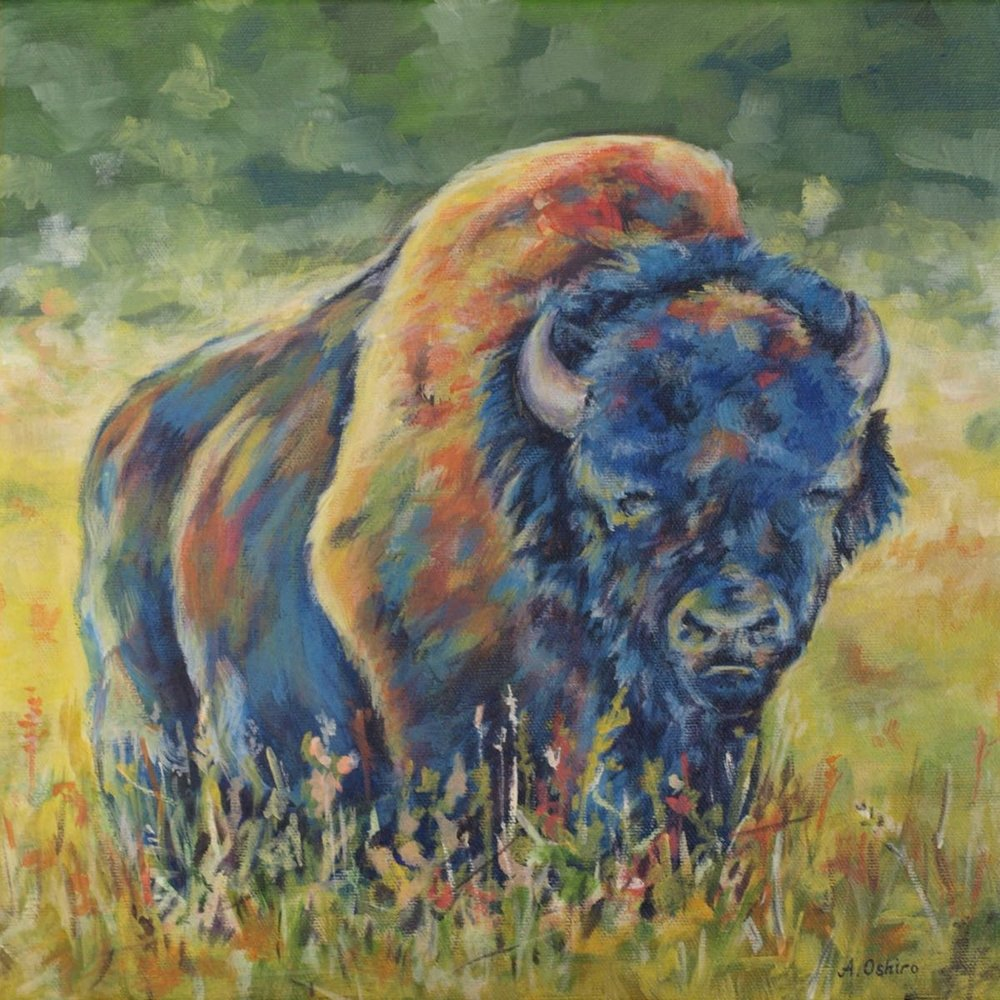 'Wood Bison', Acrylic Painting of Wood Bison in yellow field, by Ashley Oshiro, Calgary, Alberta, Local Fine Artist, Original Art