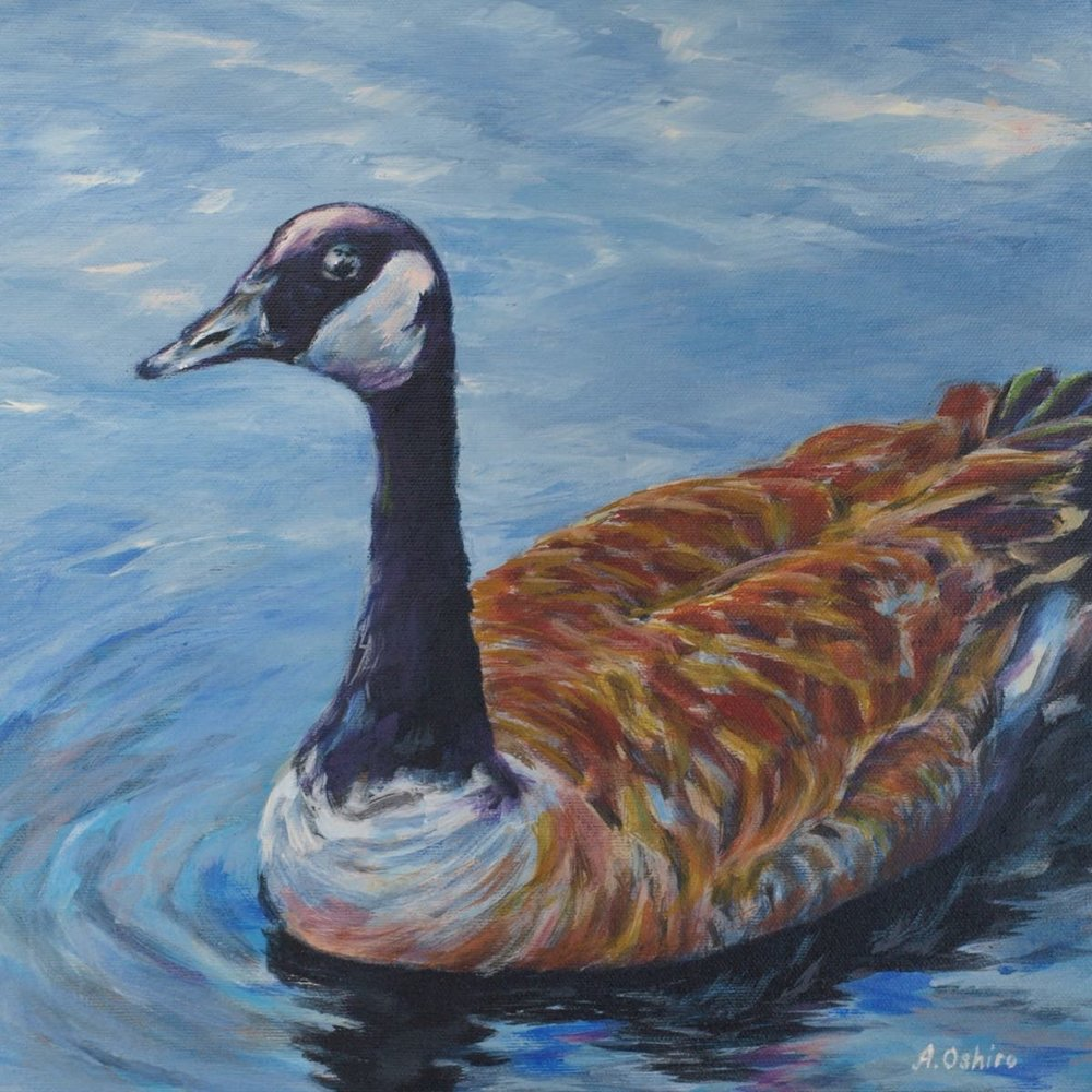 'Canada Goose', Acrylic Painting of Close-up of Canada Goose in water, by Ashley Oshiro, Calgary, Alberta, Local Fine Artist, Original Art