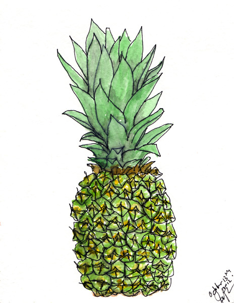 """Pen and watercolor. """"Pineapple"""" October 2012. Prints available in various sizes. Copyright © 2012 - 2017 Jennifer Russ, All Rights Reserved."""