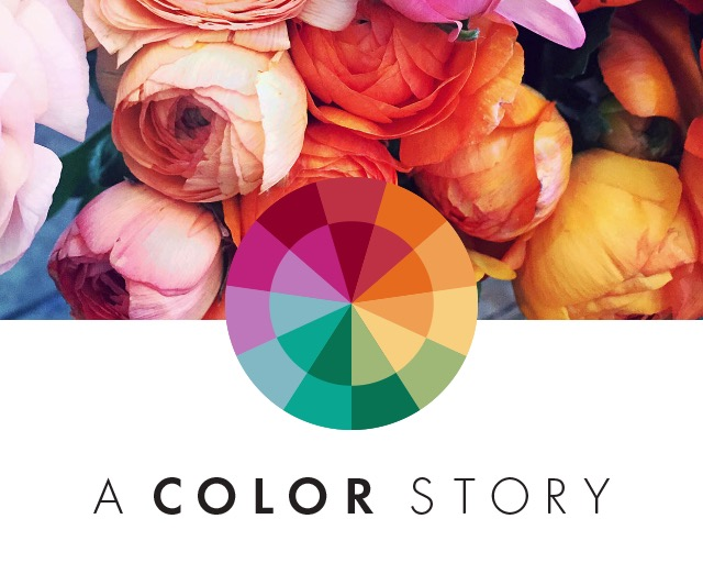 A COLOR STORY -