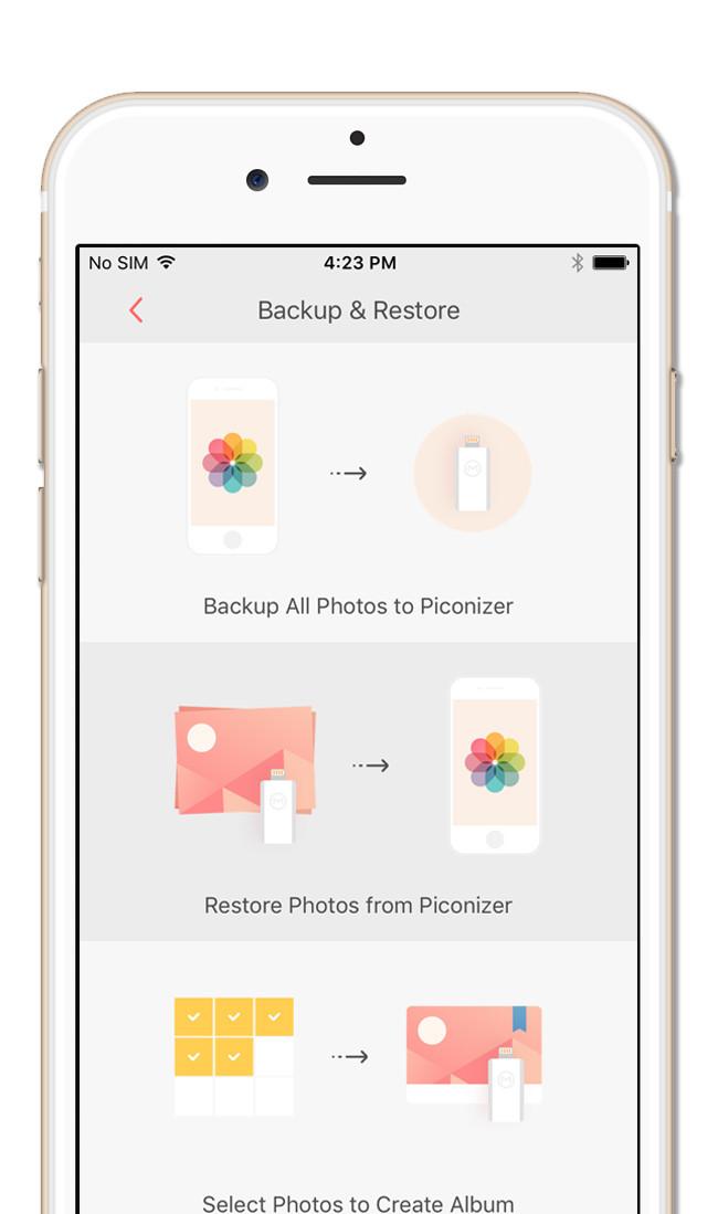 Piconizer App