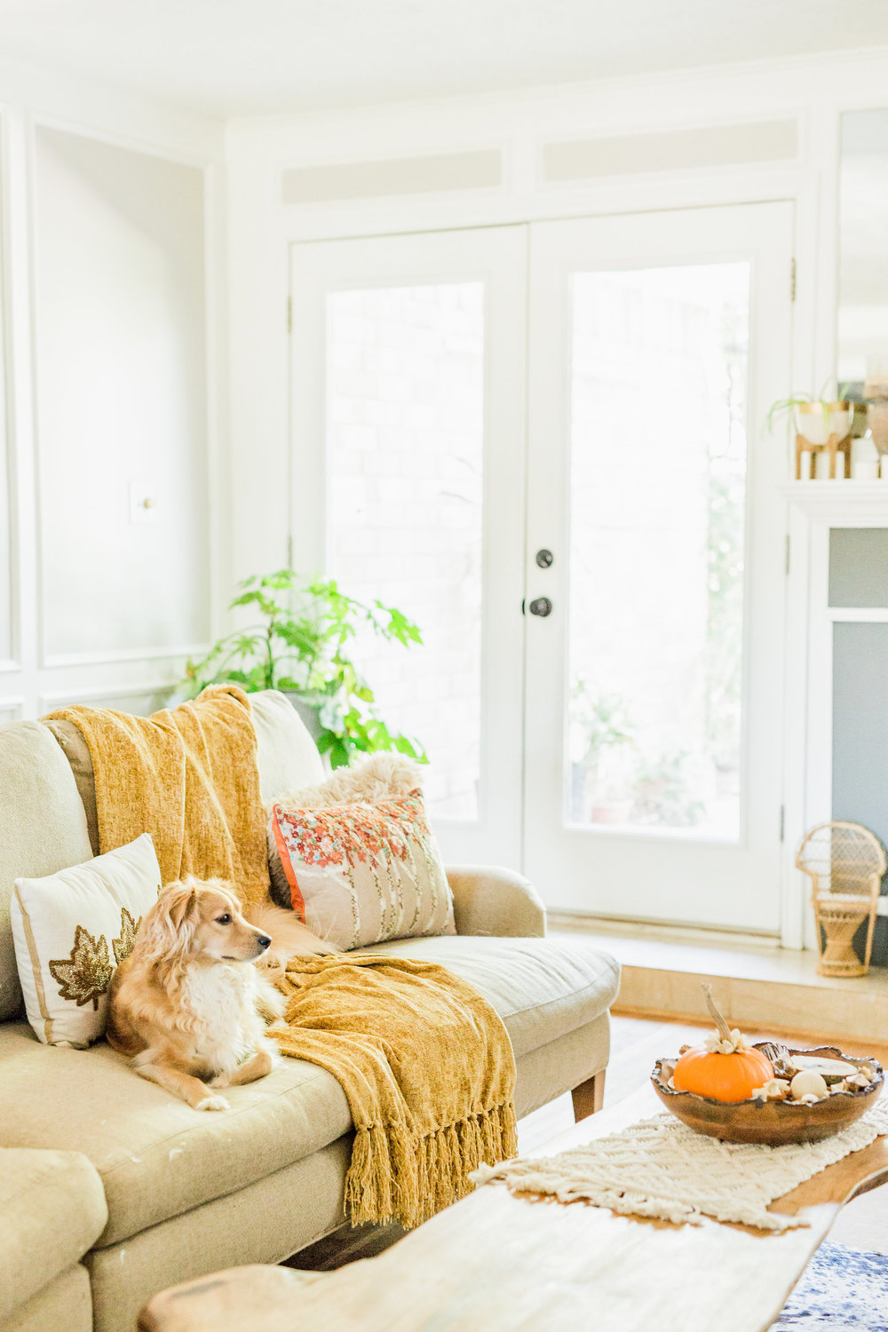 How to Easily Bring Thanksgiving Décor into Every Room — JOYFULLY GREEN