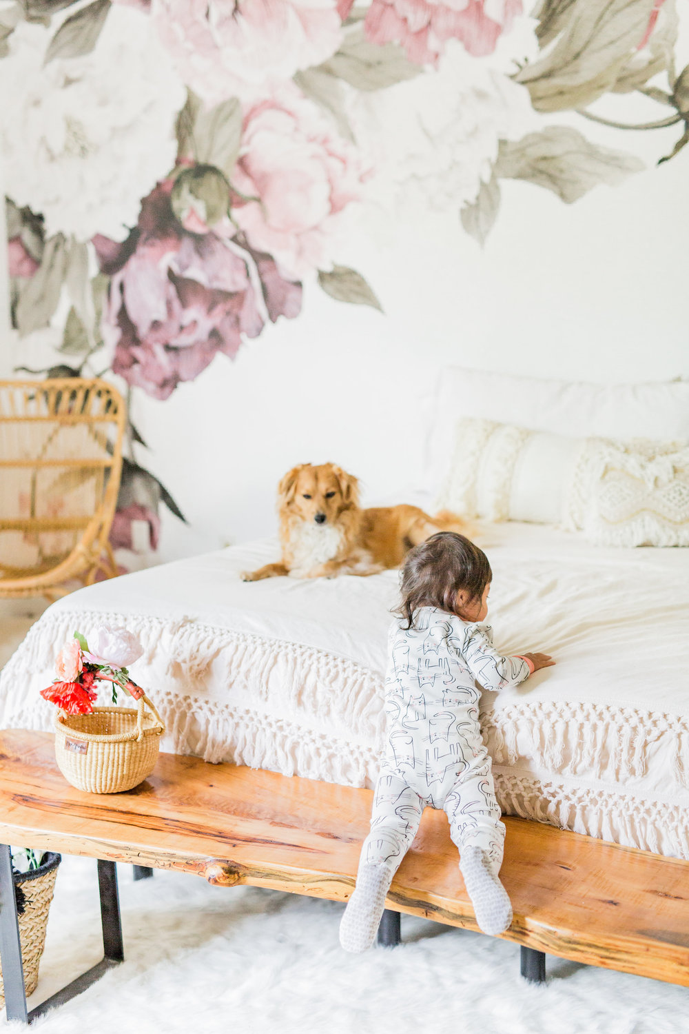 Carter's cat pjs peony removable wallpaper live edge bench