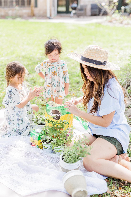 Joyfullygreen Miracle-gro Bonnie Plants Indoor Herb Garden DIY