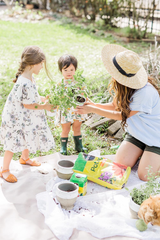 Joyfullygreen Miracle-Gro Bonnie Plants Herb Garden Plant Macrame Hanger DIY