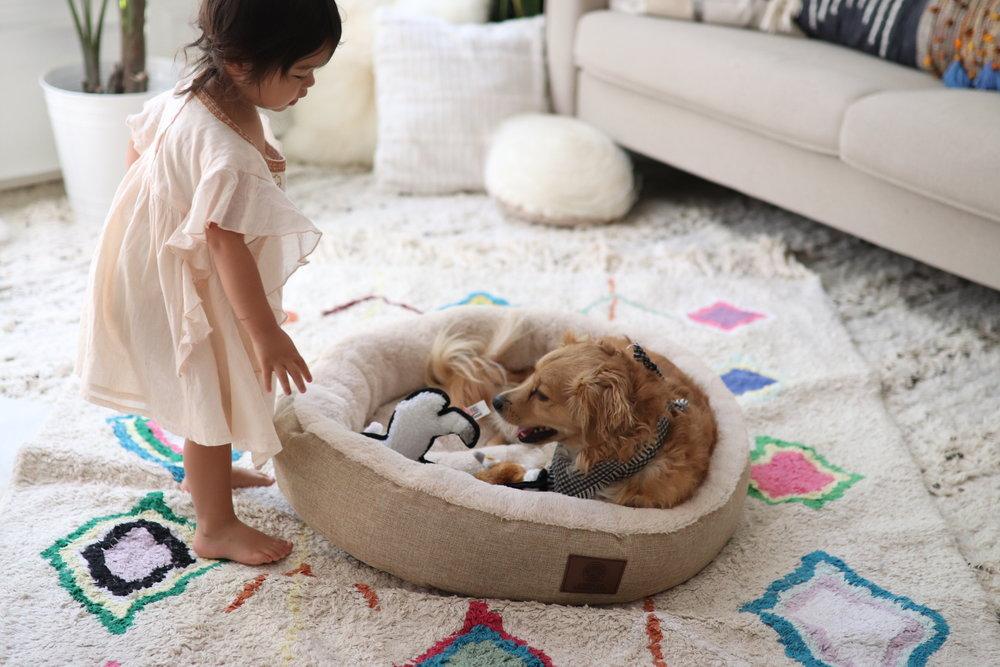 Joyfullygreen Gordman's National Pet Day Baby and Puppy Love-10.jpg
