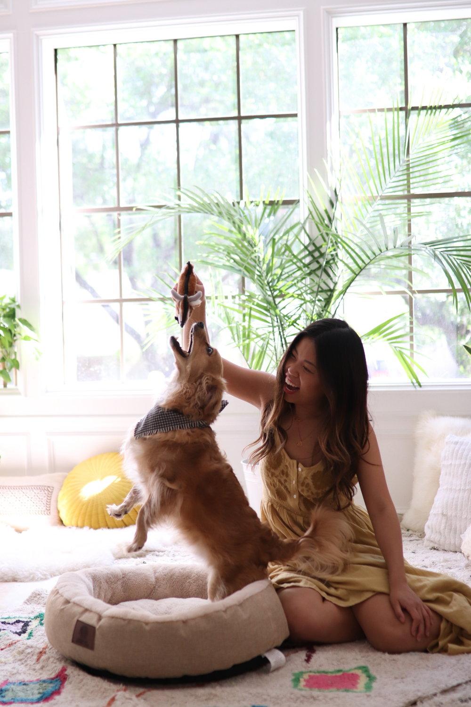 Joyfullygreen Gordman's National Pet Day Baby and Puppy Love-14.jpg