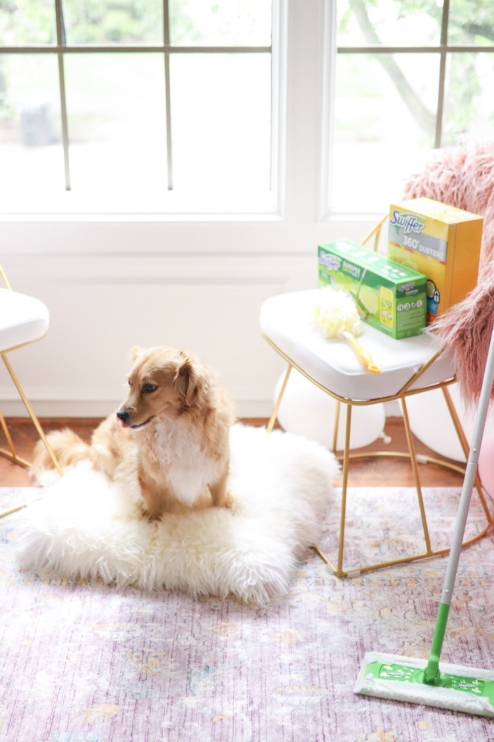 how to clean pet fur and dust with swiffer