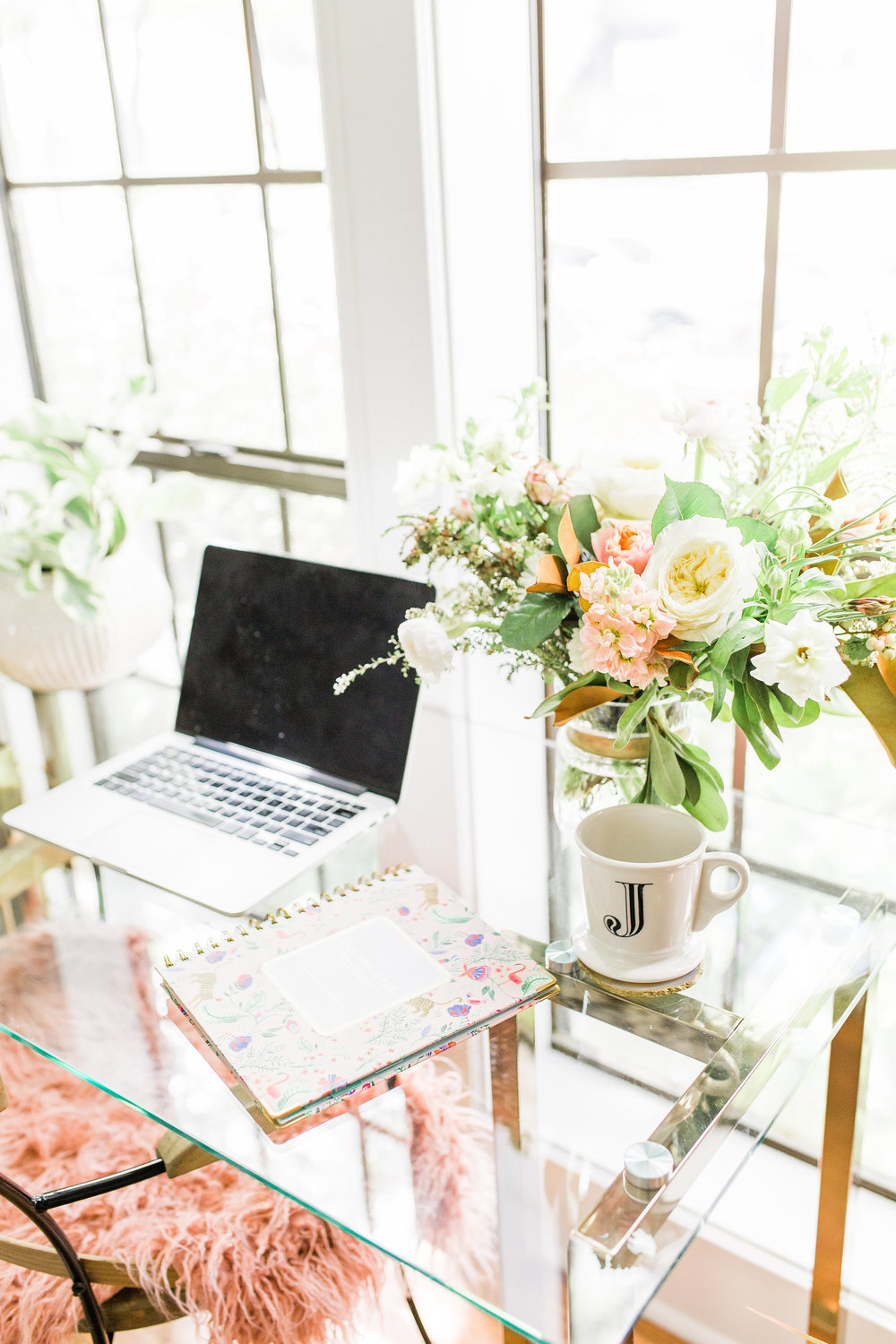 Modern white and blush office transformation with perfect white paint before and after house plants