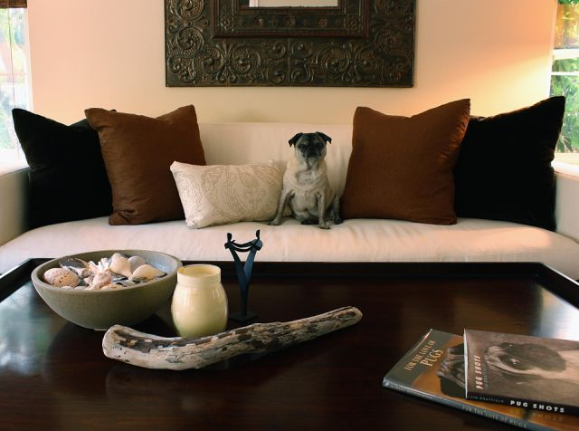 tiffany_lee_ann_design_brown_living_room_01.jpeg