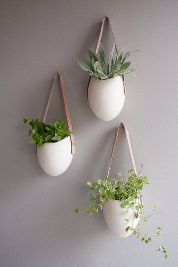 Anthropologie Leather Latched Wall planters