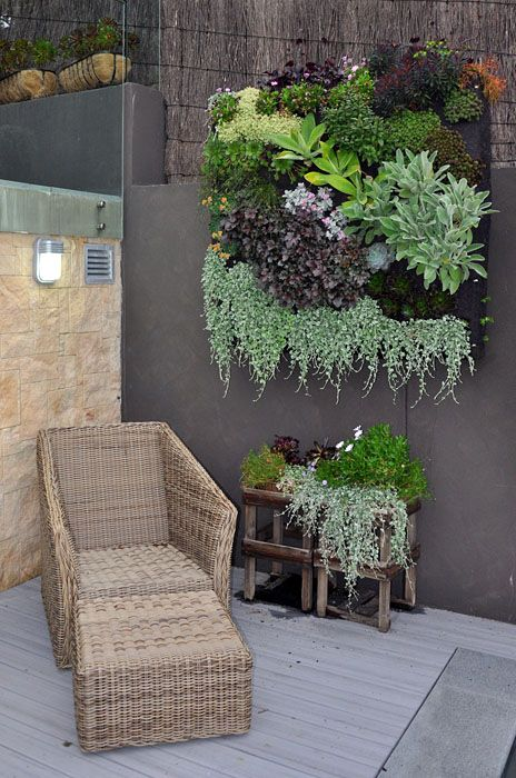 Large scale vertical succulent garden in outdoor living space