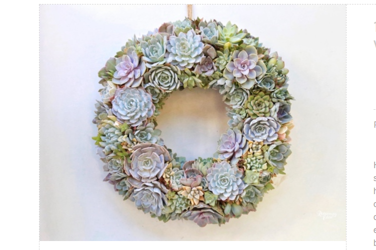 Succulent Wreath - The California favorite is a beautiful and elegant way to decorate with an unconventional Christmas wreath.This wreath pictured is made by my good friends at Redeeming Eden.Click the picture to shop.
