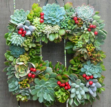 succulent wreath with berries
