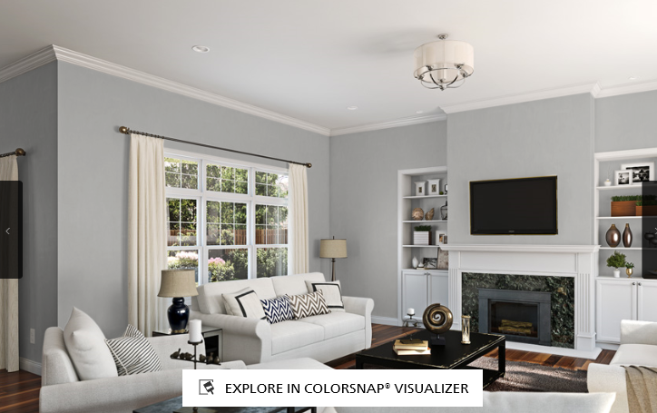 Sherwin Williams' Colorsnap