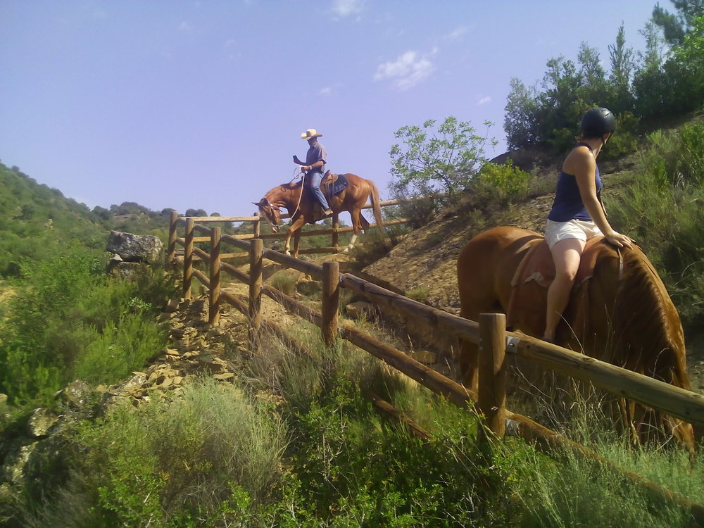 Paseos - Podréis disfrutar de los caballos y combinarlo con la visita de los maravillosos alrededores de BiergeSoy de una duración de una a tres horas, y nos adaptamos a cualquier nivel de equitación. Tanto si es tu primera vez como si ya tienes un alto nivel, siempre disfrutarás con nuestros paseos.