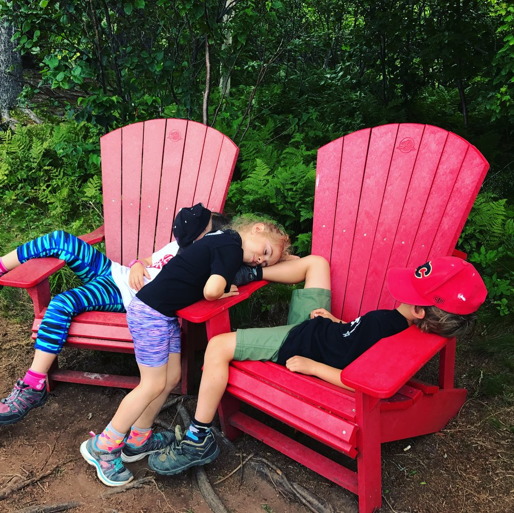 #Sharethechair on Matthews Head Trail in Fundy National Park.