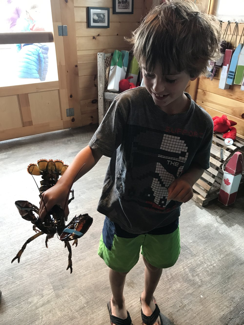 PEI lobster...yum!