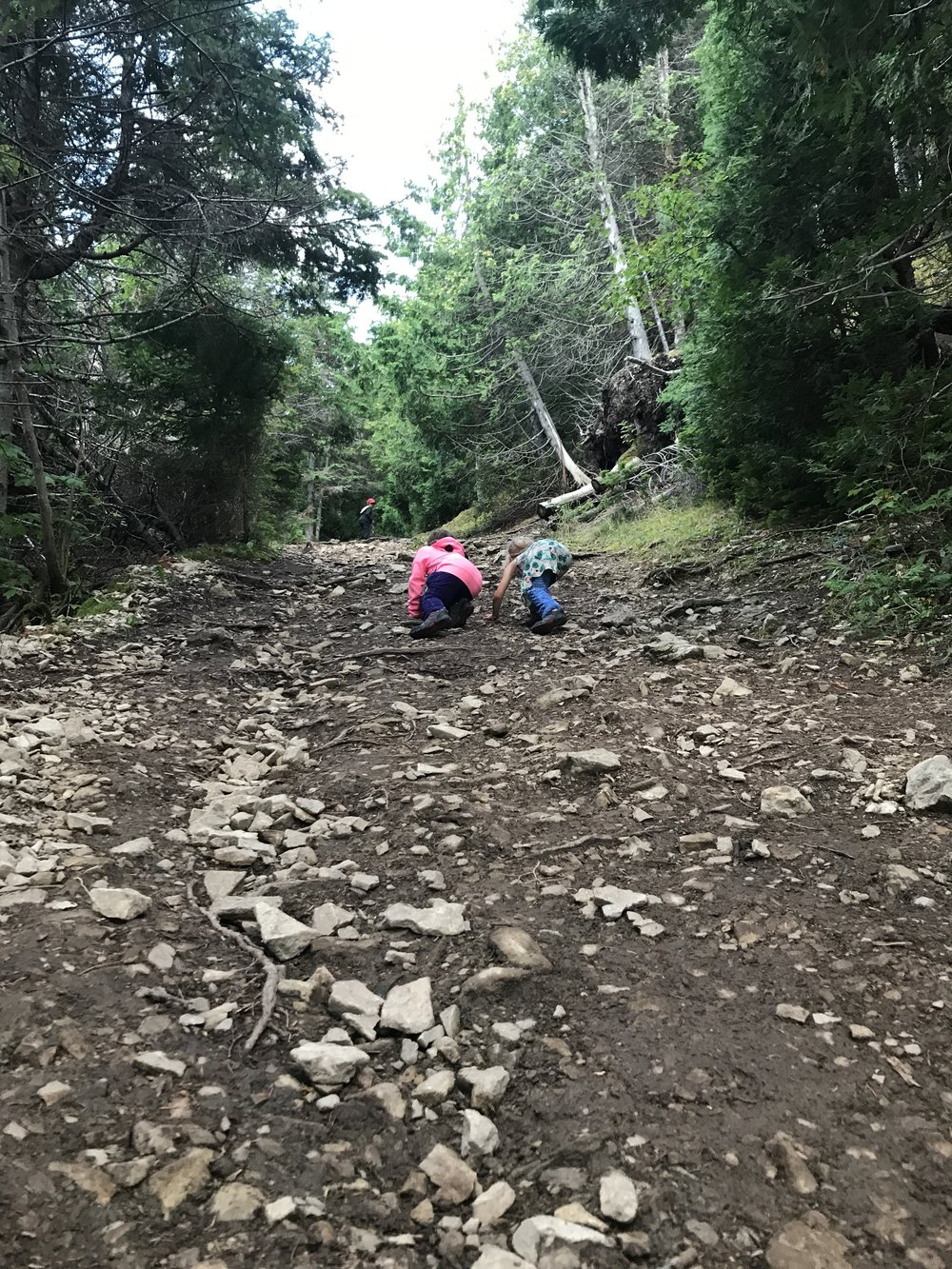 The uphill trail to the Observation deck. Sophie and Ellie dramatizing the climb.