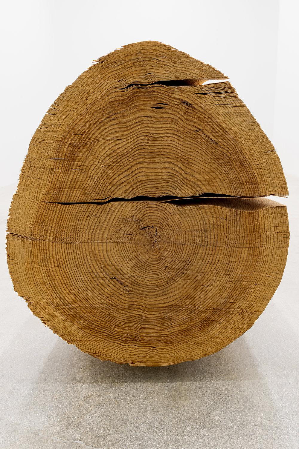 Wood No. 5-CI, 1984