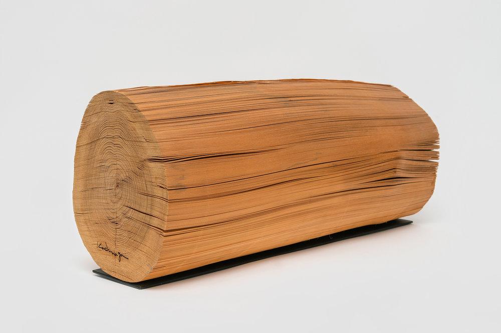 Wood No. 5 K, 1978