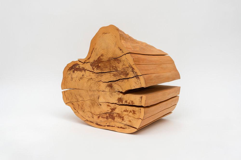 Wood No. 11 BT, 1982