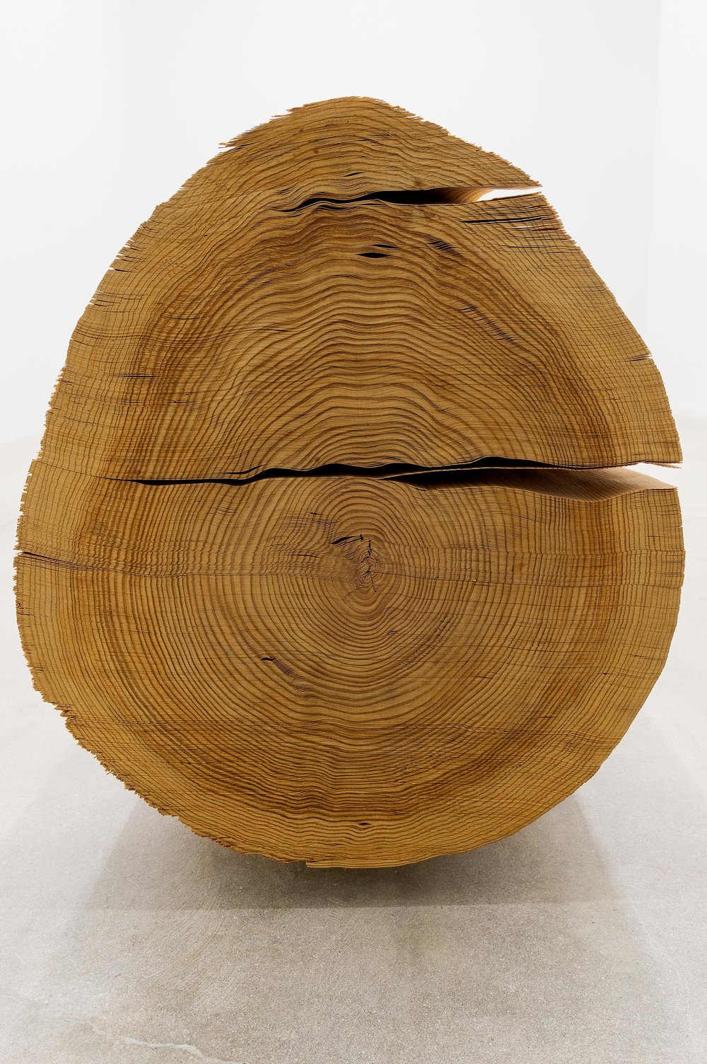 Wood No. 5-CI, 1984