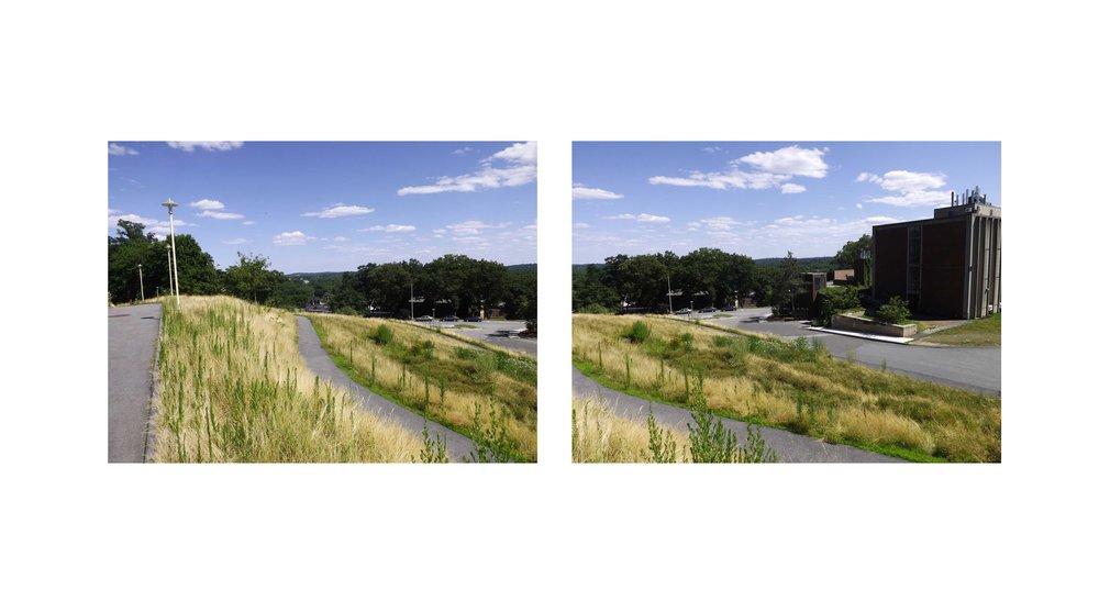 grass-view1.jpg