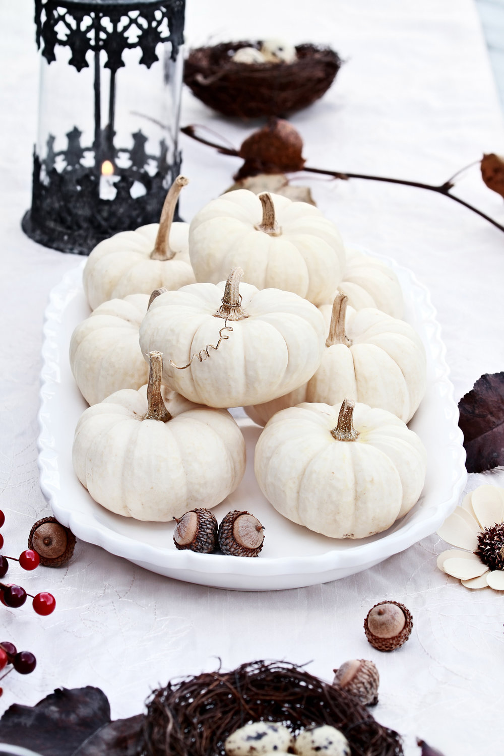 White mini pumpkins - charming!