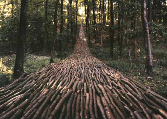 Michael Hansen - Organic Highway