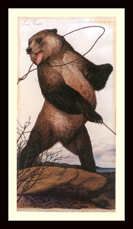 Walton Tom Ford Bear.jpg