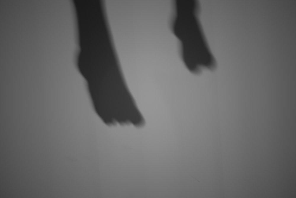 Allison Rufrano_Dreamscapes_06.jpg