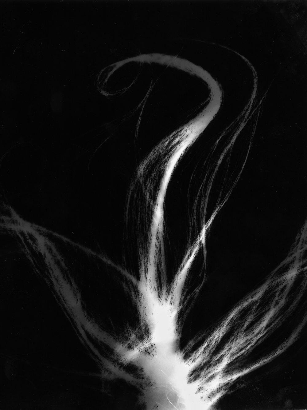 hairogram for sccc faculty show.jpg