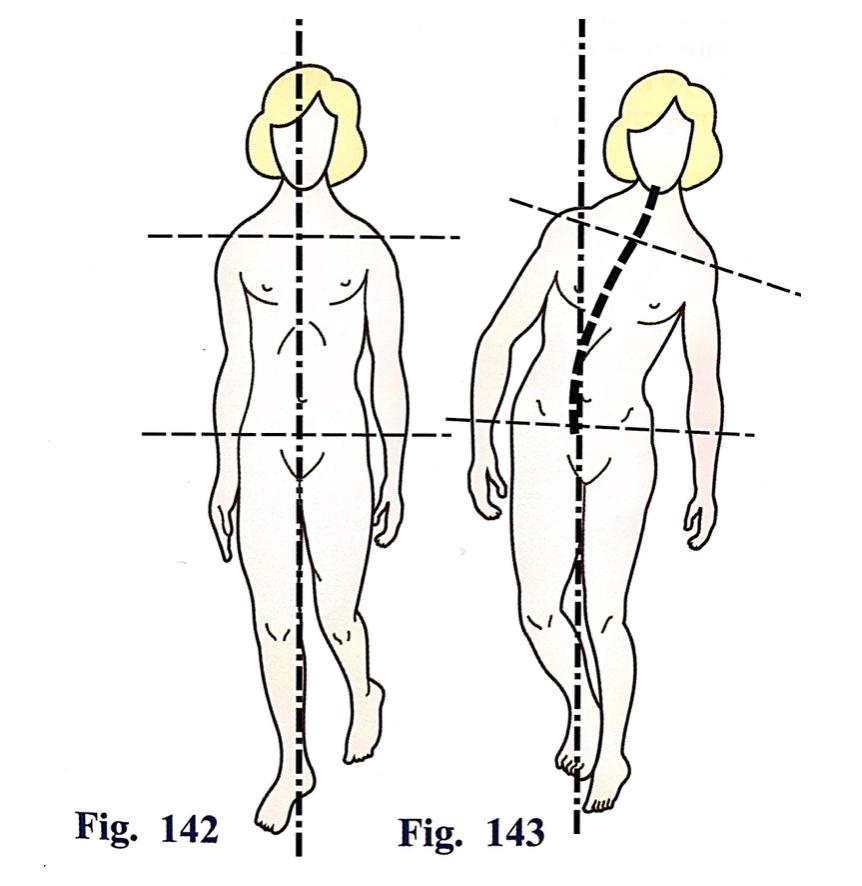 Kapandji. Fisiología Articular.