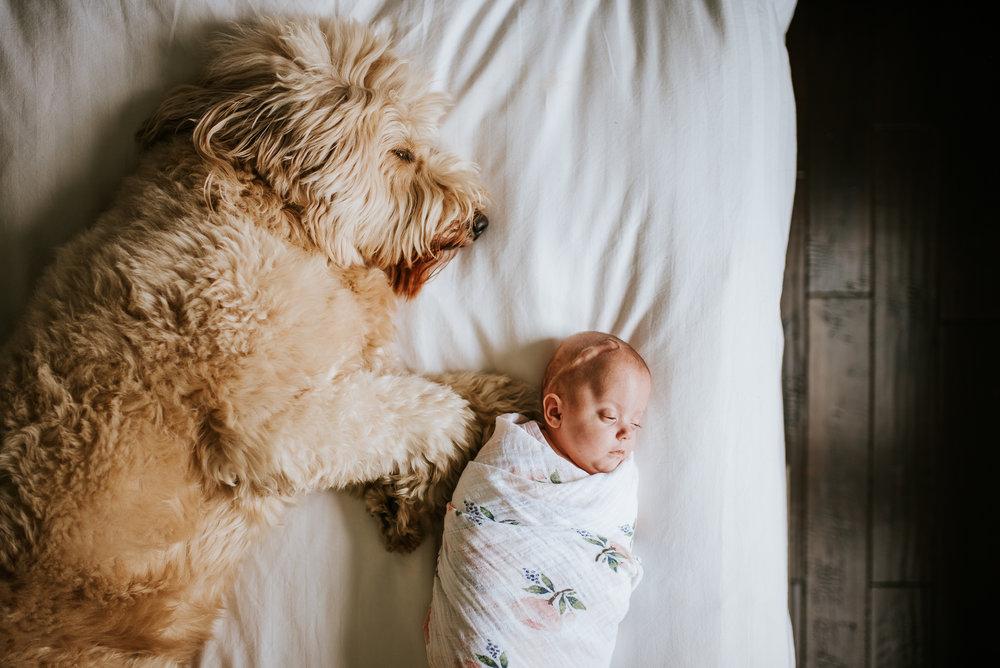 nataliethomasphotography.com-in-home-newborn-session-4559.jpg