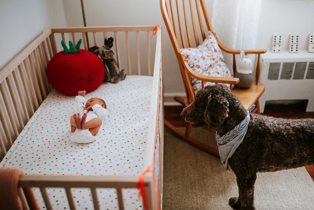 nataliethomasphotography.com-in-home-newborn-session-1562.jpg
