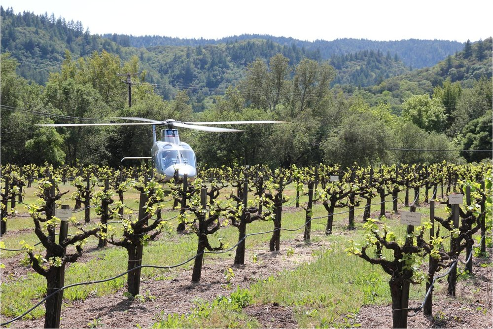 helicopter-rides-passalacqua.jpg
