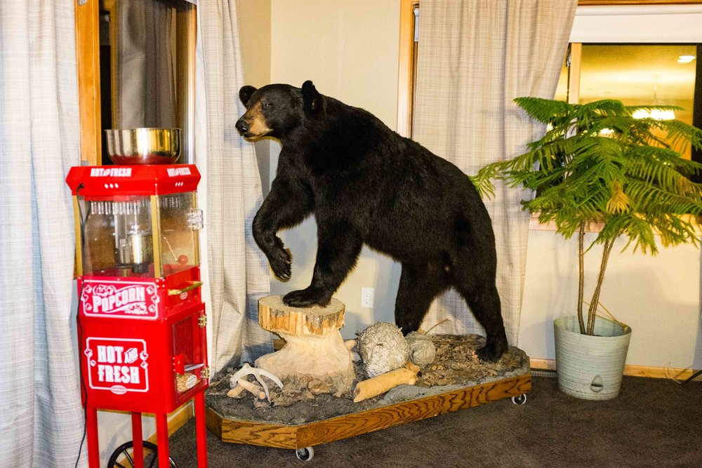 Our Airbnb came equipped with a popcorn machine and a bear...on wheels. This scene is nothing if not epic. Luckily the bear was in the same place in the morning when we woke up.