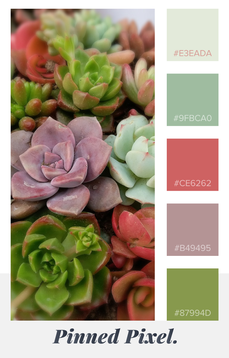 Pinned Pixel Spring Succulents Color Palette