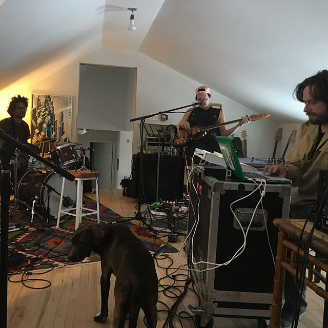 New pals @yeasayer (and Lola the dog)