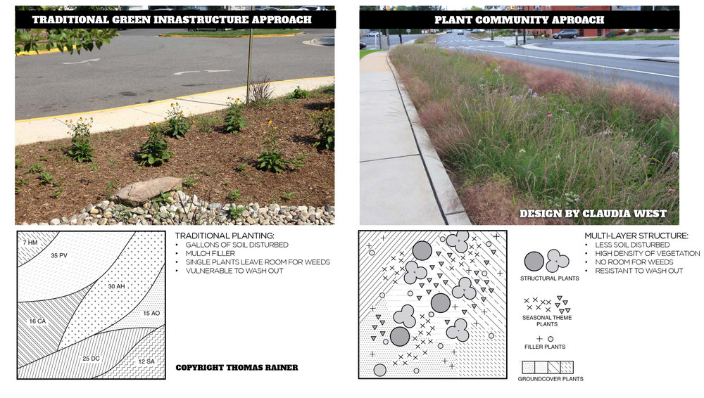 A traditional approach to green infrastructure arranges plants as objects in a sea of mulch; the better approach is to create a diversity of plants interwoven together as shown in the design on the right by Claudia West in Lancaster, PA. This requires the right horticultural expertise, but the benefits are vast.