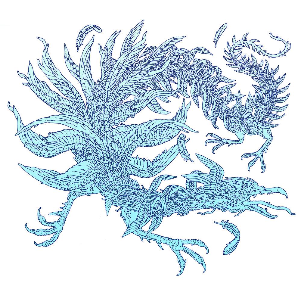 MCD Books. Flying Creature With Many Wings. Borne Bestiary By: Jeff Vandermeer.
