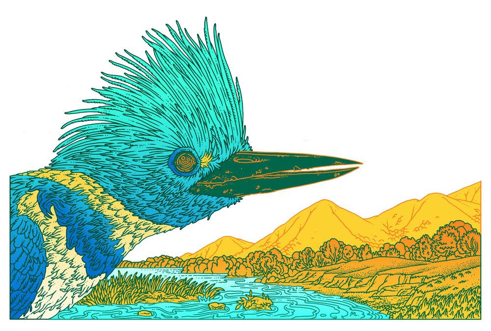 Audubon Magazine. AD Kristina Deckert