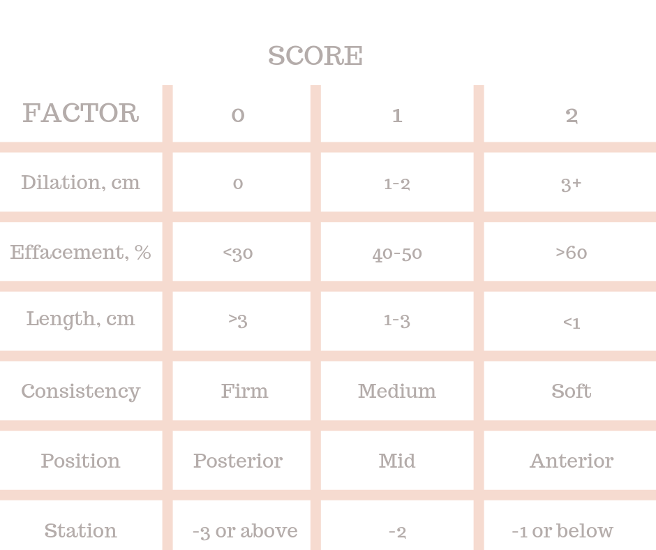 Bishop score chart