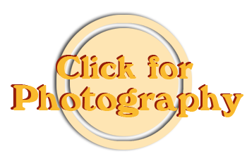 NOS Photography button_2.png