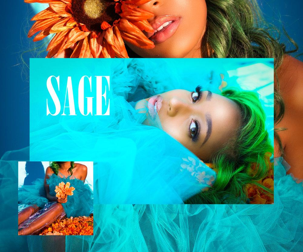 Sage cover 1.jpg