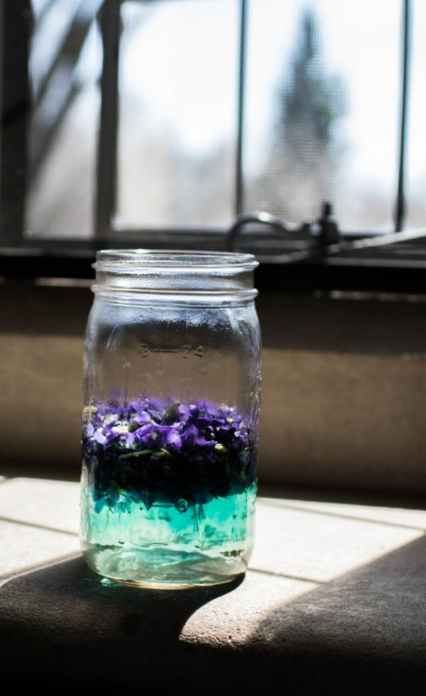 Violets steeping.  Photo by FreeDom Danielle Flowers