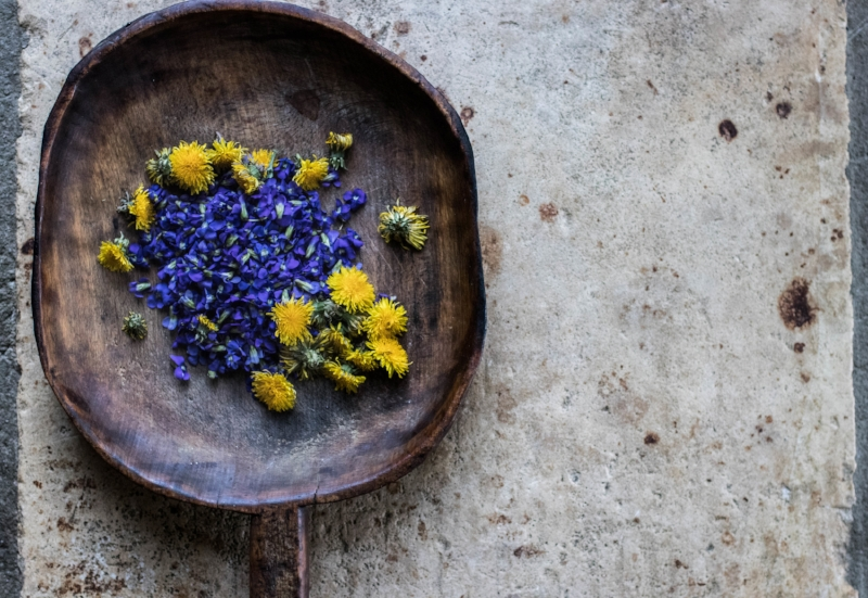 Violets and Dandelions.  Photo by FreeDom Danielle Flowers.