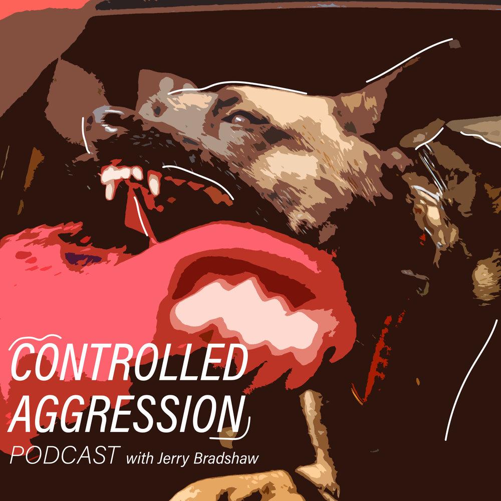 ControlledAggression_JerryBradshaw.jpg