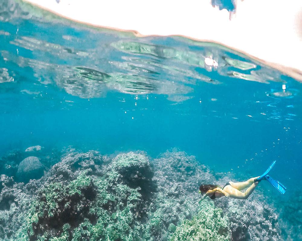 DiversDen-2.jpg